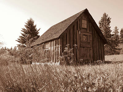 Duluth Photograph - Shack At Stoney Point by Alison Gimpel