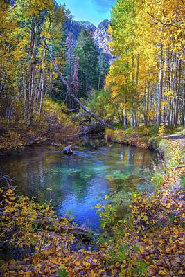 Photograph - Shades Of Fall by Lynn Bauer