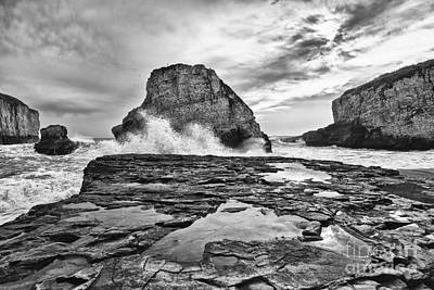 Ocean Vista Photograph - Shark Fin Cove by Jamie Pham