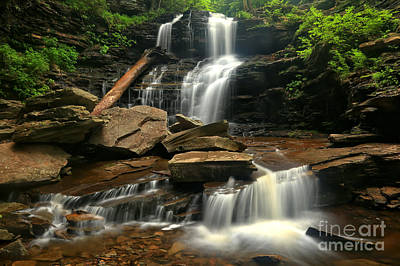 Photograph - Shawnee Falls At Ricketts Glen by Adam Jewell