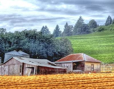 Jerry Sodorff Royalty-Free and Rights-Managed Images - Shed and Grain Bins 17238 by Jerry Sodorff