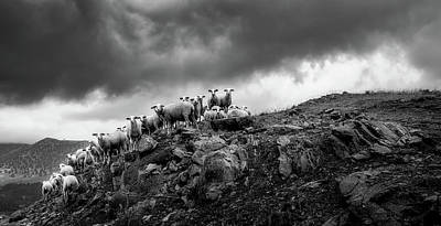 Photograph - Sheep On A Mountain Ledge - Greece by Pixabay
