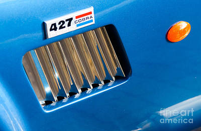 Photograph - Shelby Cobra 427 by Colin Rayner