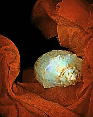 Mixed Media - Shell On Satin by Lynda Lehmann