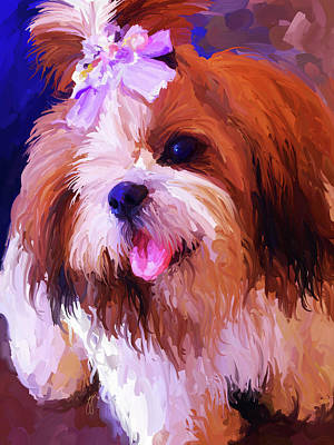 Shih Tzu Painting - Shih Tzu by Jai Johnson