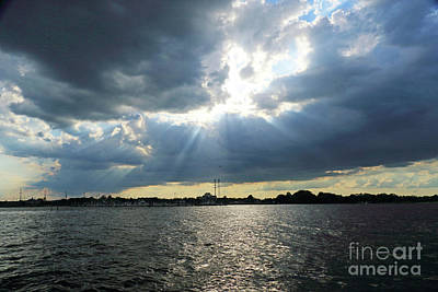 Photograph - Shining Through by Mary Haber