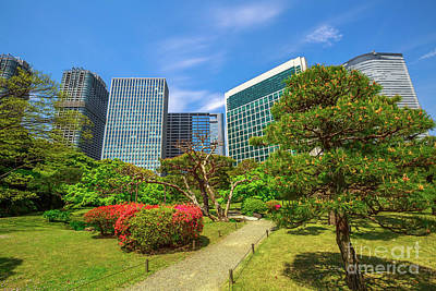 Photograph - Shiodome Buildings In Hamarikyu Gardens by Benny Marty