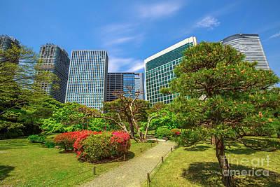 Photograph - Shiodome Buildings In Hamarikyu Gardens by Benny Marty