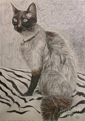Wall Art - Painting - Siamese Cat by Cybele Chaves