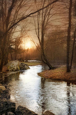 Art Print featuring the photograph Silence Is Golden by Robin-Lee Vieira