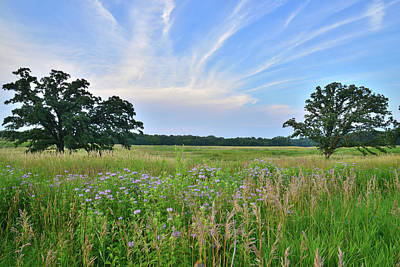 Photograph - Silver Creek Conservation Area Sunset by Ray Mathis