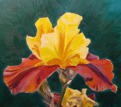 Yellow Flowers Painting - Single Iris by Angelina Sofronova