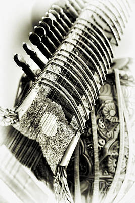 Stringed Instrument Photograph - Sitar And Tabla by Tim Gainey