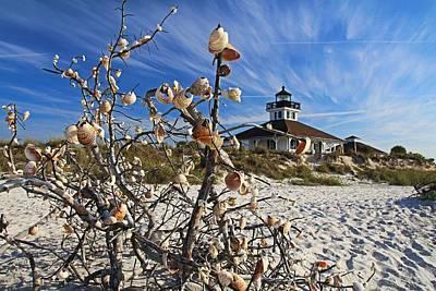 Photograph - Sitting Seaside by Michiale Schneider