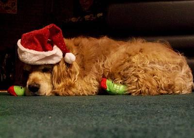 Photograph - Sleepy Santa by Fareeha Khawaja