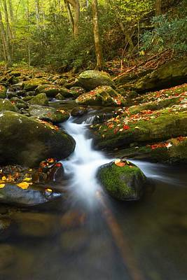 Water Photograph - Smoky Mountain Stream by Dennis Nelson