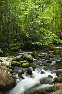 River Scenes Photograph - Smoky Mountain Stream by Andrew Soundarajan