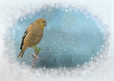 Michael Jackson - Snow Bird by Cathy Kovarik