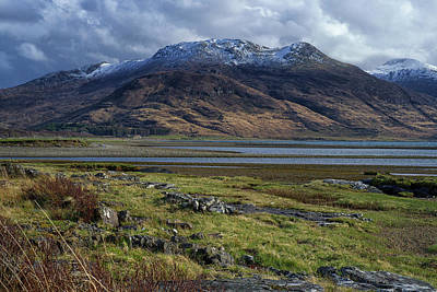 Photograph - Snow Capped by Christopher Rees