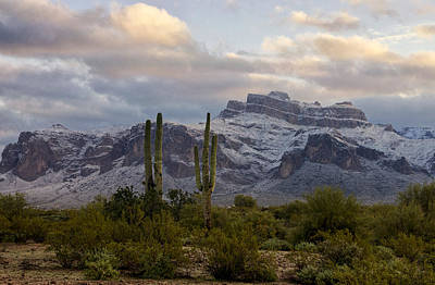 Photograph - Snow Covered Superstitions  by Saija  Lehtonen