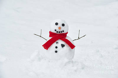 Photograph - Snowman Love by Tim Gainey