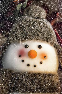 Photograph - Snowman by Pamela Williams