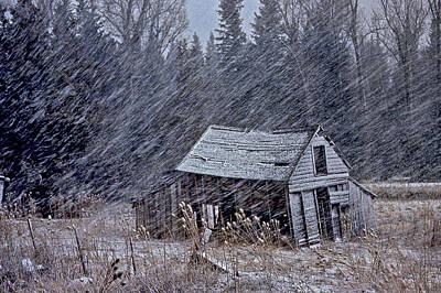 Photograph - Snowy Cabin by Gary Wing