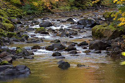 Photograph - Sol Duc River by Lynn Bawden