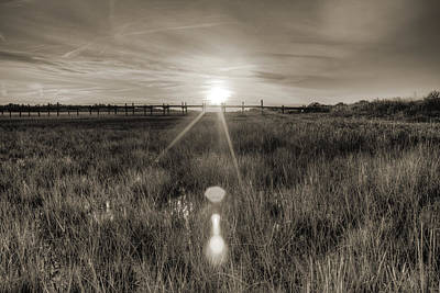 South Dock Wall Art - Photograph - Sol Legare Sunset by Dustin K Ryan