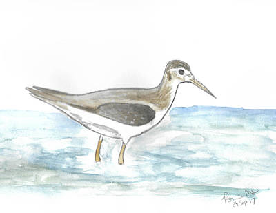 Sandpiper Mixed Media - Solitary Sandpiper by Ronnie Maum