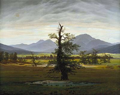 Painting - Solitary Tree by Caspar David Friedrich