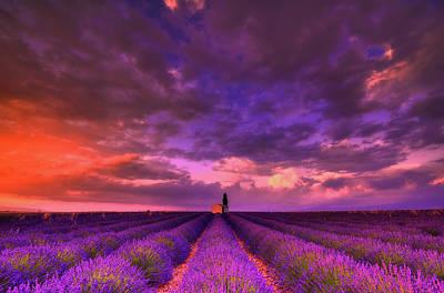 Provence Photograph - Solitude by Midori Chan