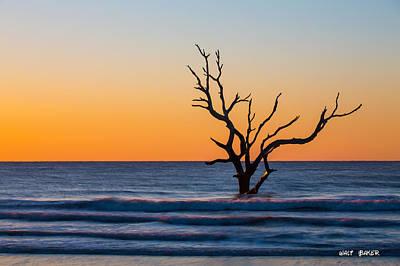 Photograph - Solitude by Walt  Baker