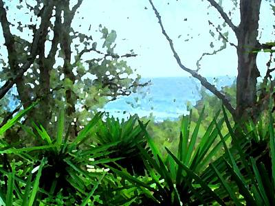 Photograph - South Shore Bermuda by Ian  MacDonald