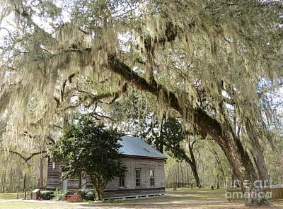 Photograph - Southern Country Church by Tim Townsend