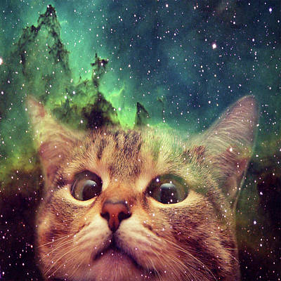 Outer Space Mixed Media - Space Cat by Zachary Govitz