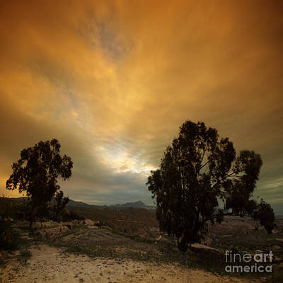Landscapes Royalty-Free and Rights-Managed Images - Spanish Landscape by Angel Ciesniarska