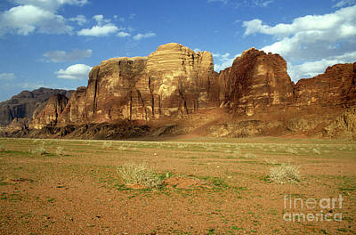 Sparse Tussock And Rock Formations In The Wadi Rum Desert Art Print by Sami Sarkis