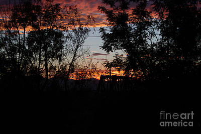 Photograph - Spectacular Sky by Anne Rodkin