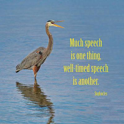 Ornithology Photograph - Speechifying by John M Bailey