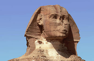Photograph - Sphinx In Egypt by Carl Purcell