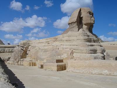 Photograph - Sphinx by Richard Deurer