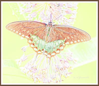 Spicebush Butterfly On Milkweed, Animal Portrait Art Print