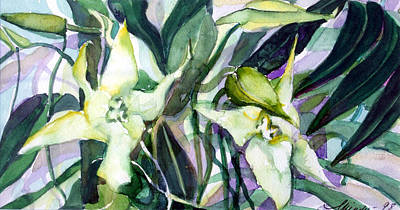 Lavender Drawing - Spider Orchids by Mindy Newman