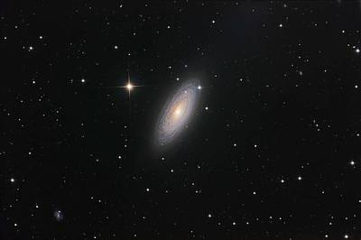 Keith Richards - Spiral Galaxy NGC 2841 3 by Celestial Images