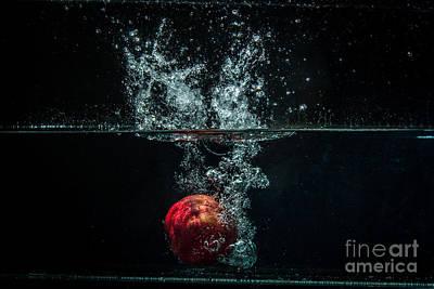 Wall Art - Photograph - splash of Pomegranate by Marj Dubeau