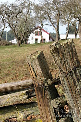 Photograph - Split Rail by Frank Townsley