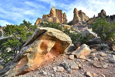 Photograph - Split Rock by Ray Mathis
