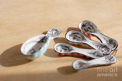 Photograph - Spoon Family by Aiolos Greek Collections