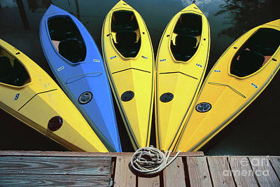 Photograph - sports boat photography - Yellow Kayaks by Sharon Hudson